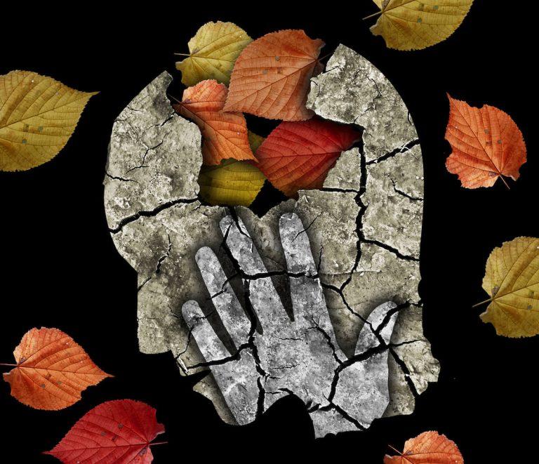 Melancolia do Outono? Estes superalimentos vão ajudar!